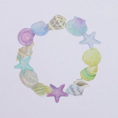 画像4: bande 貝殻ブルー