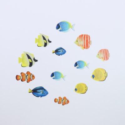 画像4: bande 熱帯魚